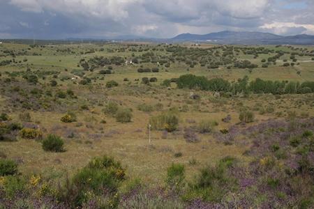 El futuro Campo de Golf de la Ryder Cup de Madrid 2018, supera la prueba medioambiental