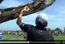 VÍDEO: Rory McIlroy o como colgar la bola en un árbol con el driver y salvar el par