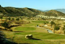 El golf no paró en España en la Huelga del 14-N