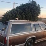 Graham DeLaet cargó su árbol en el coche. Una tradición