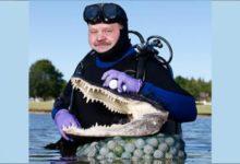 Los buceadores de las bolas en lagos, el 'swing' más peligroso en los campos de golf