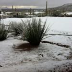 Anochecía en Tucson cuando David Toms subía esta imagen