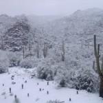 Gonzalo Fdez.-Castaño subía a su Twitter esta foto del campo completamente nevado