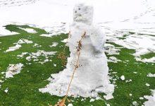 """Snowman"" WGC Match Play: RESULTADOS EN DIRECTO"