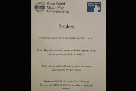 El que avisa no es traidor, serpientes en el Volvo World Match Play