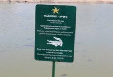 Un cocodrilo atacó a un golfista en un campo de Cancún