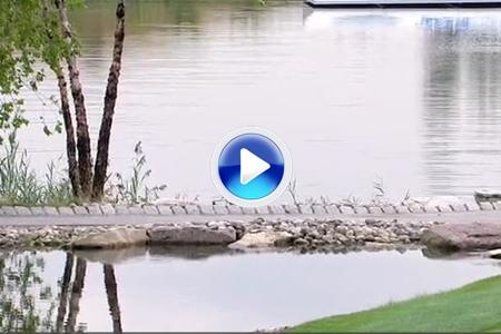 Brown tuvo suerte, la bola botó en un puente hasta la bandera para sacar el eagle (VÍDEO)