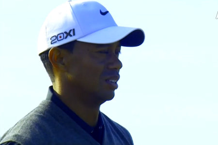 tiger Woods 13