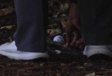 Analizamos la última infracción de Tiger Woods (VÍDEO)