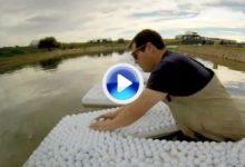 Así se hizo el logo del Waste Management, necesitó más de 140.000 bolas (VÍDEO)
