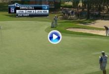 La calidad de Driscoll quedó demostrada con este golpe desde el búnker. Fue el mejor del día (VÍDEO)
