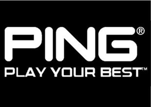 PING 310x220