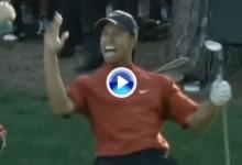 Un golpe histórico. El chip más famoso de Tiger en Augusta que dio la vuelta al mundo (VÍDEO)
