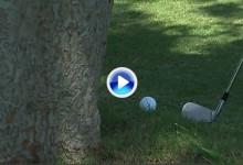 Brendon Todd jugó un golpe rodado bajo un árbol con la parte trasera del palo ¡espectacular! (VÍDEO)