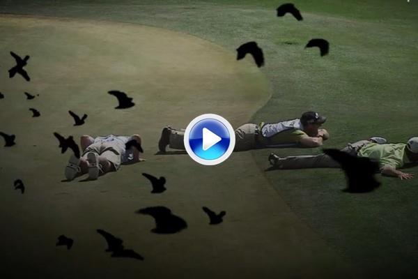 No son los pájaros de Hitchcock, son los pájaros del PGA Tour que declaran la guerra al Circuito (VÍDEO)
