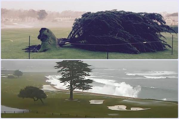 Arbol 18 de Pebble Beach antes (durante la tormenta) y después