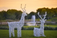 Celebre la Navidad en Las Colinas Golf & Country Club