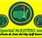 OpenGolf te lleva -un año más- al Masters de Augusta de la mano de Font del Llop
