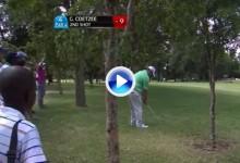 Coetzee ganó el Tshwane Open con golpes a lo Seve. Éste entre los árboles es un ejemplo (VÍDEO)