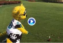 La mascota de los Jacksonville -rodilla en tierra- puso la bola en green en la isla de Sawgrass (VÍDEO)