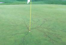 Un rayo deja tatuada su furia cerca del agujero de un campo de golf en Utah