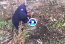 Probablemente este sea el mejor golpe que usted haya visto nunca en un campo de golf (VÍDEO)