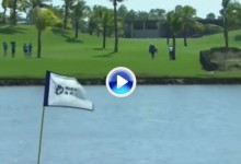 Blue Bay LPGA (China): Resumen de los golpes destacados en su segunda jornada (VÍDEO)