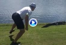 El mundo al revés: J. Roenick, leyenda de la NHL, ataca a un cocodrilo en un campo de golf (VÍDEO)