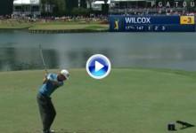 Wilcox consigue un Ace en el 17 de Sawgrass ¡14 años después desde que lo hiciera Jiménez! (VÍDEO)