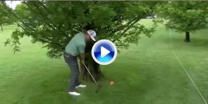 Hoffman utiliza al caddie de Els en beneficio propio sin quererlo. Paró la bola con su cuerpo (VÍDEO)