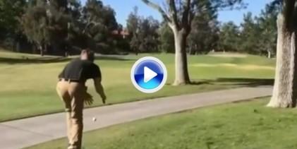 Manolete, Manolete, si no sabes torear… Este chico intentó evitar los árboles y salió escaldado (VÍDEO)