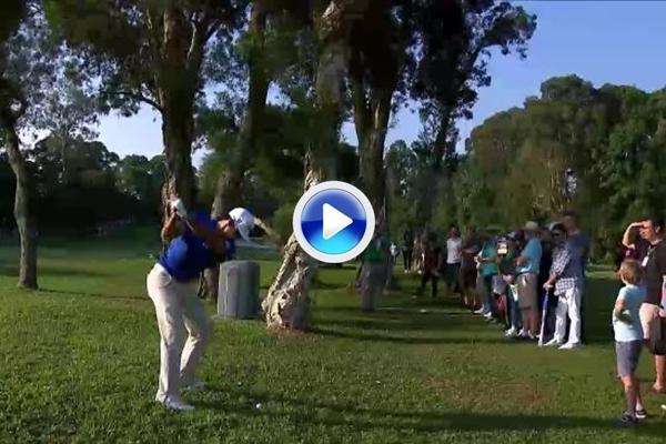 El Golf es duro: Un árbol se cruzó en el camino de Cabr.-Bello, el accidente le costó dos golpes (VÍDEO)