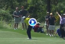 C.-Bello se cuela entre los mejores BOOM-Barderos del PGA en una temporada inolvidable (VÍDEO)