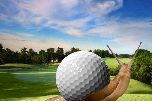 caracol-juego-lento-foto-mijas-golf