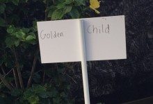 ¿Golden Child? La plaza de parking de Jordan Spieth en Kapalua es renombrada por sorpresa