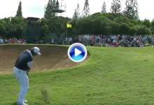 Matsuyama volvió a lucirse en el 14 de Kapalua con otro eagle que sacó la ovación del público (VÍDEO)