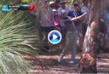 Esta recuperación de Rumford de entre los árboles la hubiera firmado el mismísimo Seve (VÍDEO)