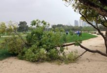 García (2º) y Elvira (3º) se salvan del temporal en Dubái y reanudarán sus rondas el sábado