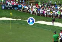 Bubba hace las maletas con este gran golpe desde la arena, el mejor del día en Palm Harbor (VÍDEO)