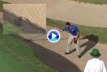 ¿Imaginan ir a jugar una bola al bunker y toparse con una cascabel? Sucedió en el Tour LPGA (VÍDEO)