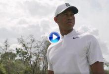 """""""¡No toquéis a Frank!"""". El anuncio de Nike en que aparecen juntos por 1ª vez Tiger, Rory y Day (VÍDEO)"""