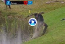 De esta forma se salva el par desde dentro del agua en un par 3. Increíble golpe de Haotong Li (VÍDEO)