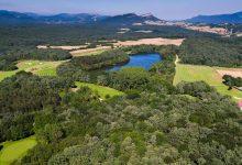 Izki, golf, gastronomía y naturaleza para descubrir la provincia de Álava este otoño