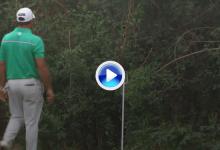 Terry Pilkadaris lanzó el putter a unos árboles tras fallar una oportunidad clara de birdie (VÍDEO)