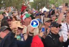 El público enloqueció con este chip-in de Tiger en el 9 con el que cogía el liderato en el Valspar (VÍDEO)