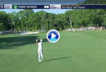 El Golf es duro… Incluso para Tiger que vio como la bola se alejaba del green con este golpazo (VÍDEO)