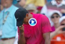 Tiger Woods fue a por el trapo y se encontró el agua en la famosa isla donde anotó doblebogey (VÍDEO)