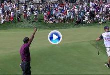 Tiger Woods puso patas arriba al público con este grandioso chip que fue directo al agujero (VÍDEO)