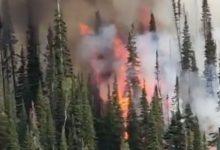 Greg Norman, obligado a abandonar su rancho en las montañas de Colorado por culpa de un incendio