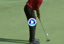 El Golf es duro: Tiger se fue del 14 con una corbata tras errar un putt de menos de un metro (VÍDEO)